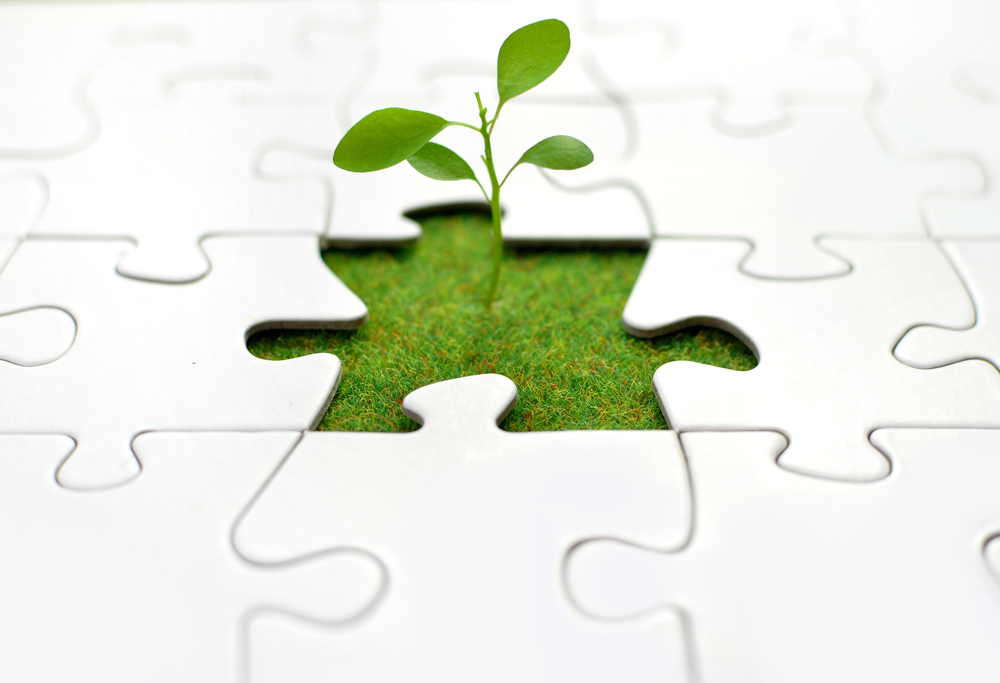 3 Pieces Of The Puzzle Needed For Business Growth