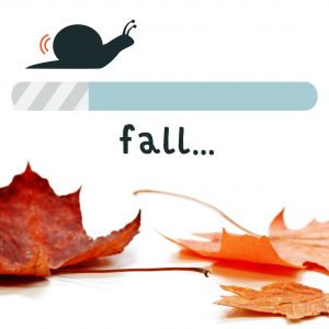 Is Fall Your Slow Season?
