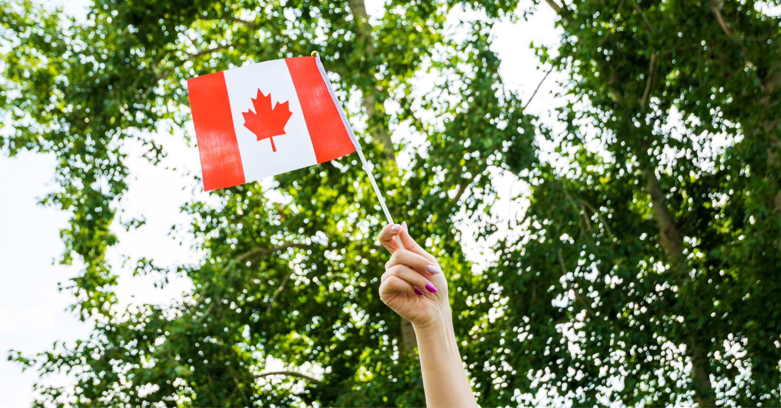 3 Ways To Show Your Canadian Pride All Summer Long